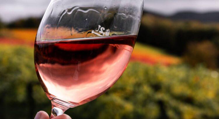 Ile BLG powinno mieć wino?